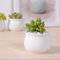 Small Round Ceramic Flowerpotitem Name: Square Ceramic Pot